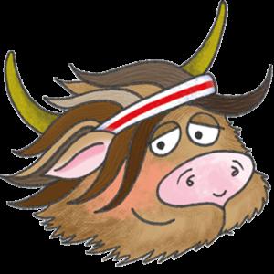 Image: Hamish the Highland Coo